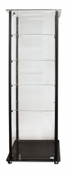 SCase Flat Pkd Al & Glass 600x460x1800